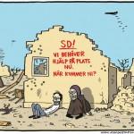 Sverigedemokratisk hjälpinsats