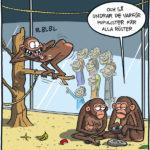 Alla känner apan
