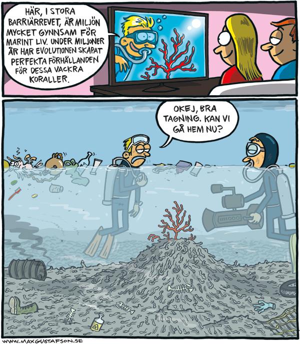 Om våra vackra döda korallrev. Satirteckning av Max Gustafson.